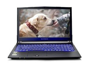 Eluktronics N870HP6 Pro-X Gaming Laptop